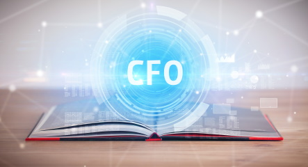 CFO perspective on dispute finance