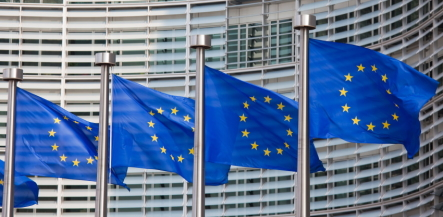 Looking Ahead: How Will the EU Representative Action Directive Affect Germany's Class Action Regime?