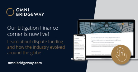 A new resource for learning the fundamentals of litigation finance